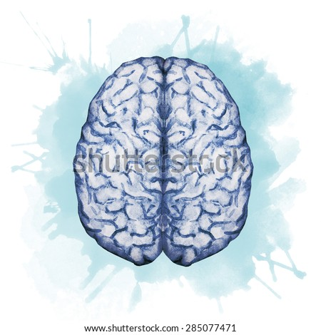 watercolor illustration, color brain - stock photo