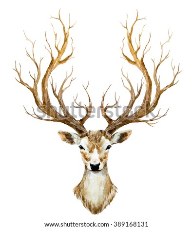 watercolor illustration isolated deer, big antlers, mountain tree branch