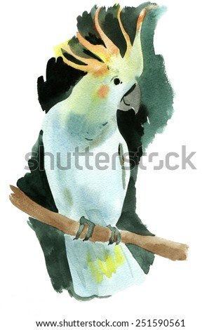 Watercolor illustration of a bird parrot - stock photo