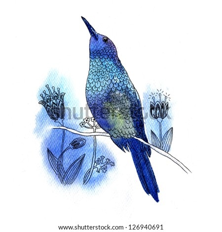 Watercolor illustration of beautiful blue bird on white background - stock photo