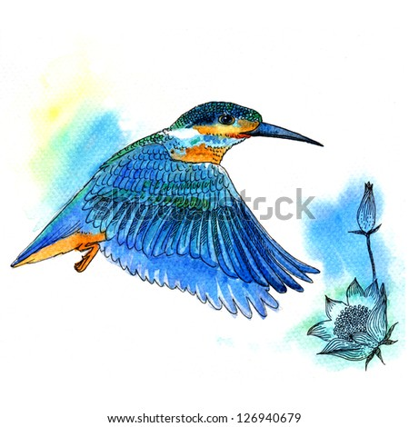 Watercolor illustration of Bird Kingfisher bird on white background - stock photo
