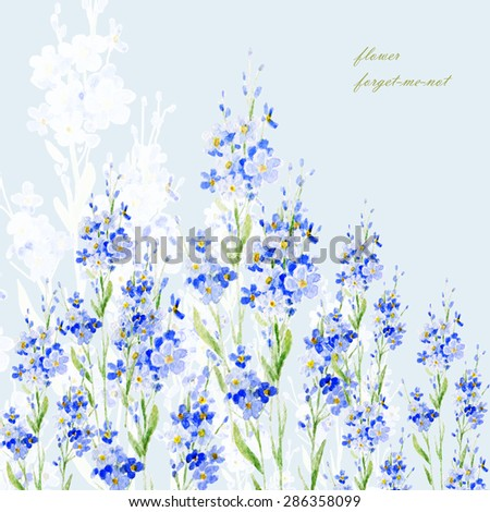 Watercolor illustration of bunches of flowers forget-me-not-5. Floral background. Watercolor illustration of a hand-drawn from nature. - stock photo