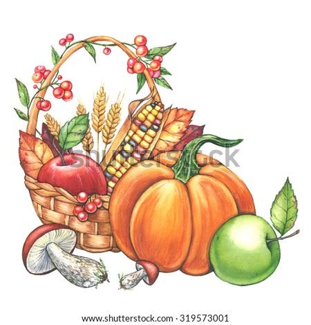 Watercolor illustration of harvest season with basket full of fruits and vegetables. Pumpkin, apple, corn, wheat, mushrooms, autumn leaves, berries. Autumn (fall) season. Halloween party - stock photo