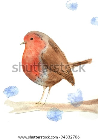 Watercolor illustration of robin