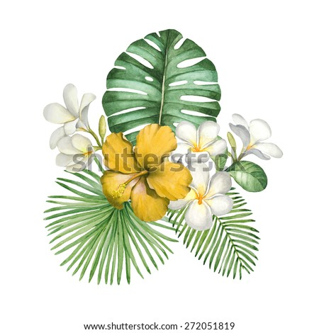 Watercolor illustration of tropical flowers - stock photo