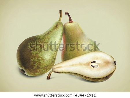 Watercolor illustrations of pears. - stock photo