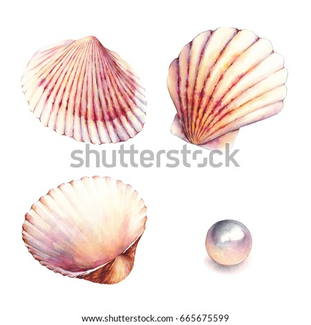 Pearl Stock Images, Royalty-Free Images & Vectors ...