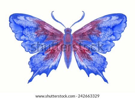 Watercolor image, butterfly on white background 7.