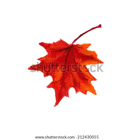 Watercolor image of autumn leaf on white background