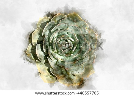 Watercolor image of cactus plant. - stock photo