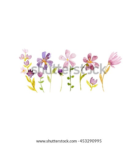 Watercolor meadow flowers (hand painted) - stock photo