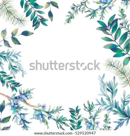 watercolor natural frame hand drawn card background with various plants leaves berries - Natural Frame