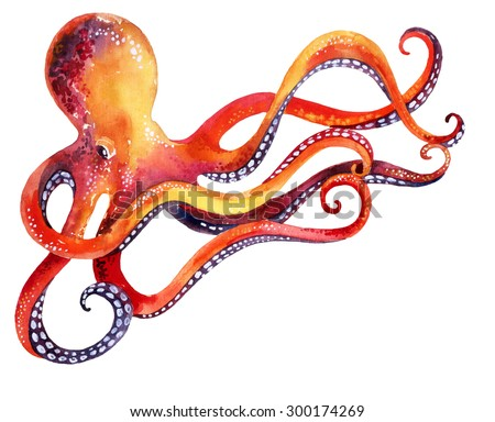 watercolor octopus. Hand painted illustration