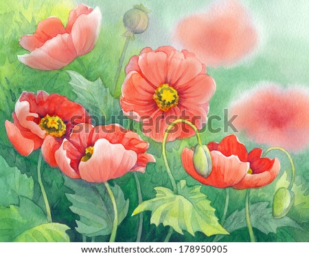 Watercolor of red poppies on green sunny flowerbed  - stock photo