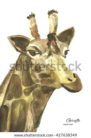 watercolor painting of a giraffe on a white background