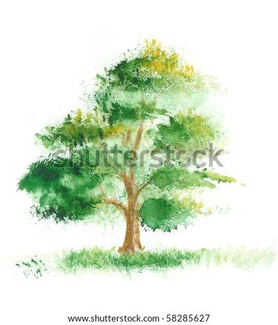 Watercolor painting of a tree on a white background