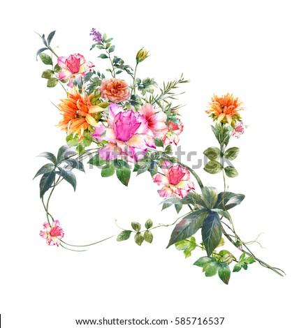 watercolor painting flower rose on white stock illustration