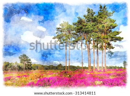 Watercolor painting of Scots Pine trees and heather in bloom - stock photo