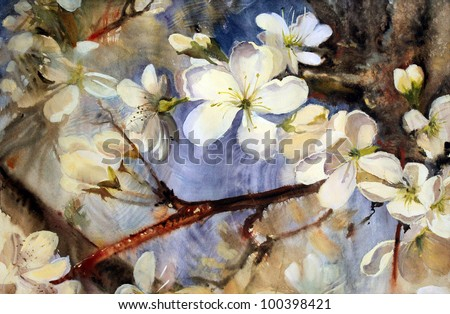 Watercolor painting of the blooming spring tree branches with white flowers. - stock photo