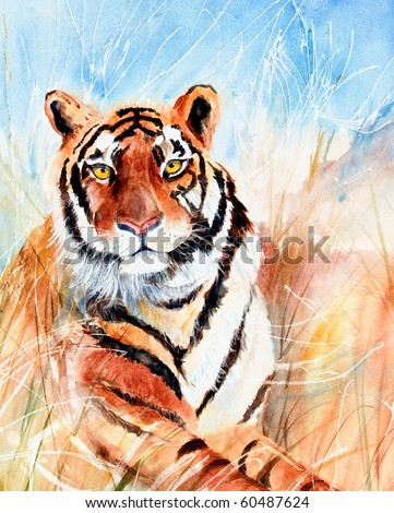 Watercolor painting of tiger in grass - stock photo