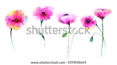 Watercolor painting poppy flower isolated flowers stock photo watercolor painting poppy flower isolated flowers on white background set of pink and red mightylinksfo