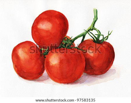 Watercolor painting, still life, tomatoes on a light background. - stock photo