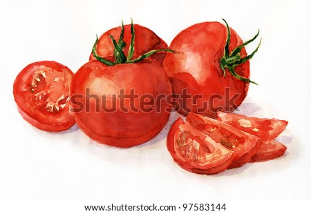 Watercolor painting, still life, tomatoes on a light background.