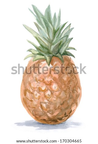 watercolor painting tropical pineapple - stock photo