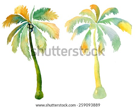 Watercolor palm seamless pattern with palm trees and coconuts. - stock photo