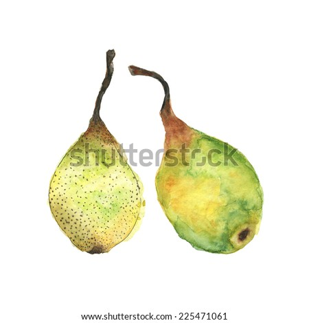 Watercolor pear.
