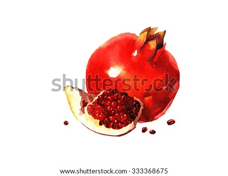 watercolor pomegranate , raster illustration isolated on white background