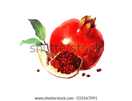 watercolor pomegranate with leaves, raster illustration isolated on white background