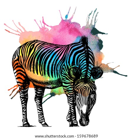 Watercolor rainbow zebra. Raster illustration. - stock photo
