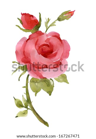 Watercolor red rose - stock photo