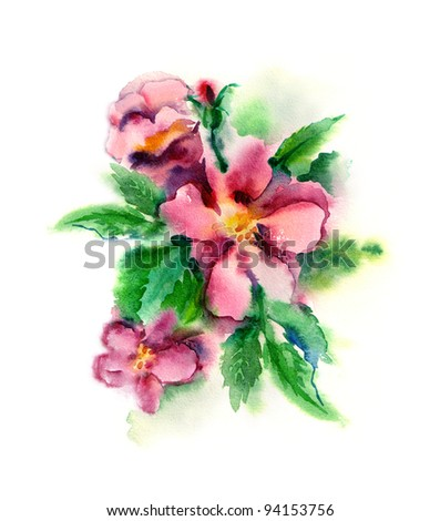 Watercolor -Rose hip flowers- - stock photo