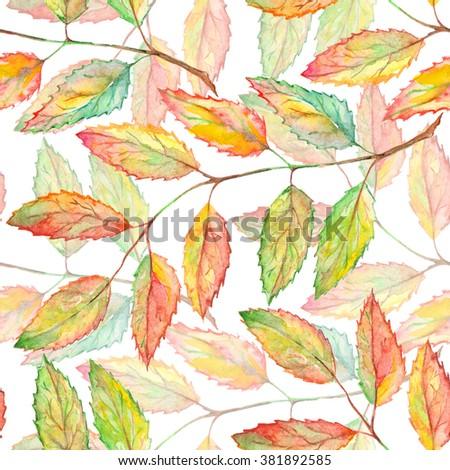 Watercolor rowan ashberry leaf branch seamless pattern - stock photo