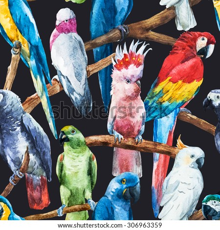 watercolor seamless pattern bright parrot tropical wallpaper, bird cockatoos, Greys, macaws, black background - stock photo