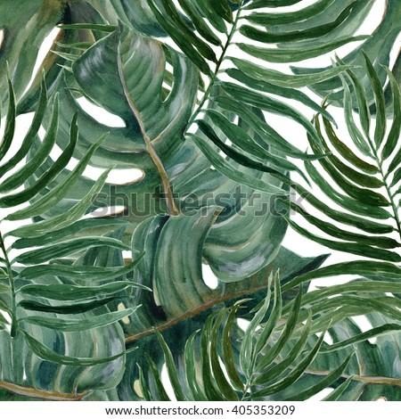Split Leaf Philodendron Clipart