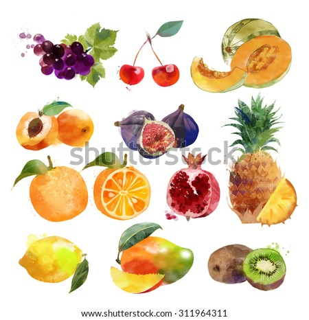 watercolor set of fruits - stock photo