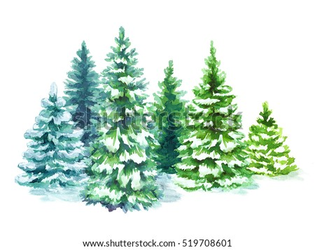 watercolor snowy forest illustration, Christmas fir trees, winter nature, conifer, holiday background, rural landscape, outdoor plants, isolated on white background