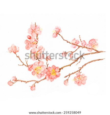 Watercolor spring flowers on the branch. - stock photo