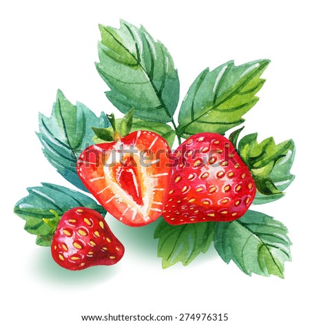Watercolor strawberry card. Hand drawn illustration of berries with leaves isolated on white background - stock photo