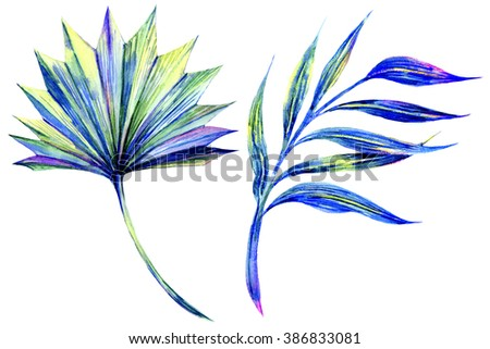 Watercolor tropical palm leaves, exotic plant, design elements, bright jungle leaves set isolated on white background - stock photo