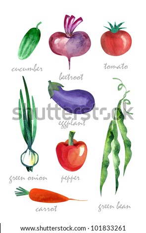 Watercolor Vegetables, isolated - stock photo