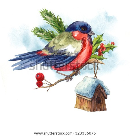 Watercolor vintage Merry Christmas and Happy New Year greeting card with Bullfinch Rowan Holly Pine cone, holiday illustration on white background. - stock photo