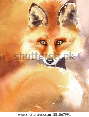 Watercolor Wild Animal Red Fox Hand Drawn Portrait Illustration