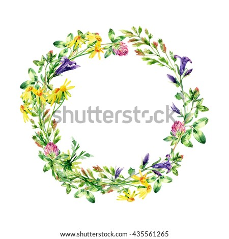 Watercolor wild flowers wreath. Bell flower, clover, daisy, weeds and meadow herbs. Watercolor wild field wreath. Hand painted floral illustration - stock photo