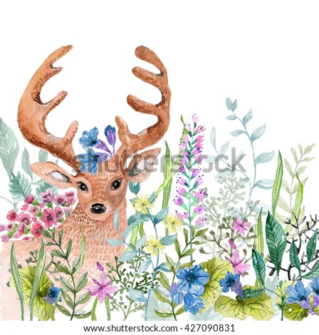 Watercolor wild herbs and flowers with cute deer over white  - stock photo
