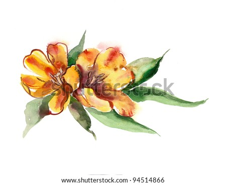 Watercolor -Yellow Tulips- - stock photo
