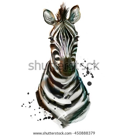 Watercolor zebra  - stock photo